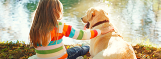 Holidays with your dog in Finland