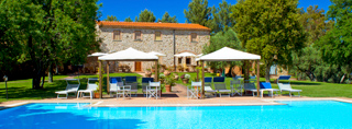 Holidays with your dog in Italy