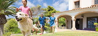 Holidays with your dog in Spain